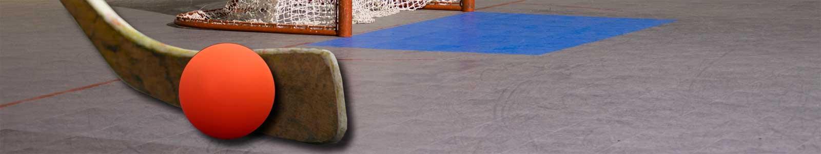 Dek and Inline Hockey Leagues