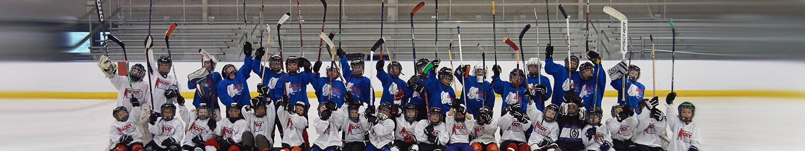 Learn to play hockey regina